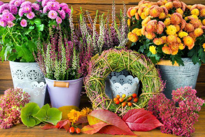Hübsche Hochzeit: So einfach könnt ihr Blumendeko selber machen